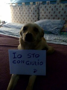 giulio3